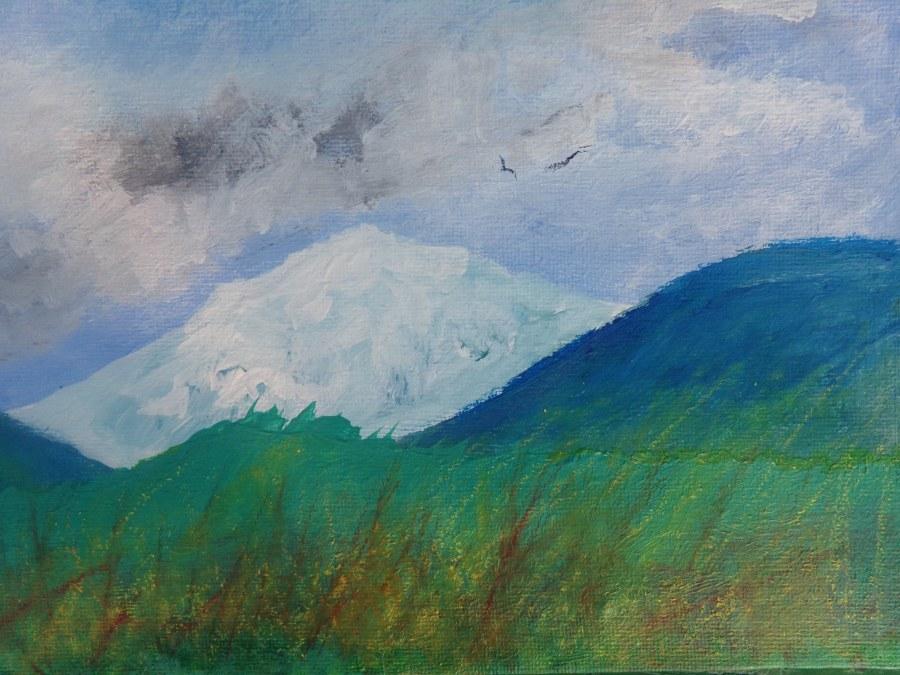 Wild landscape