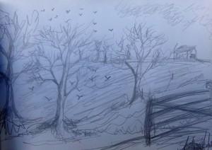 Winter trees in the field