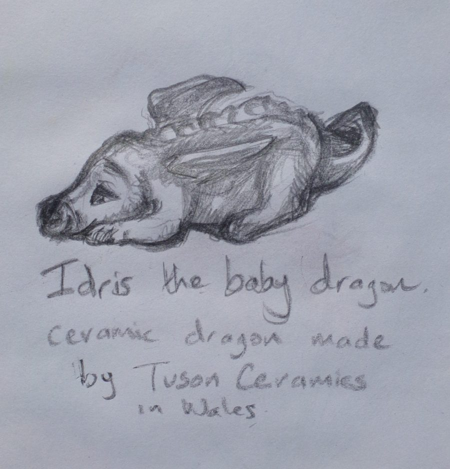 Idris the baby dragon