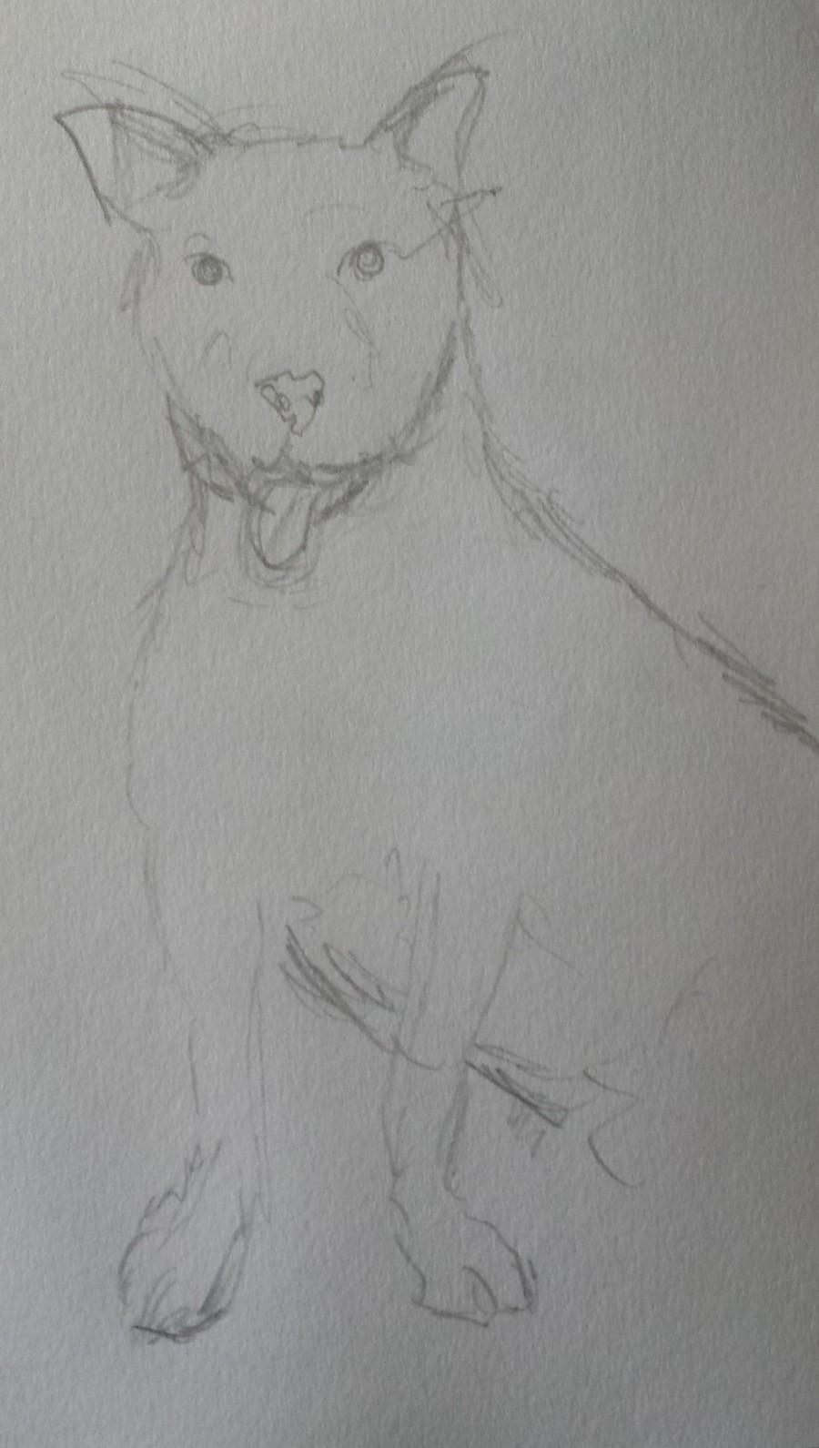 Sketch 167