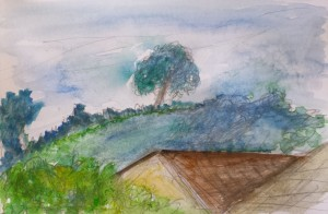 Bent tree on the hill in summer sketch 157