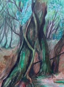 woodlands, watercolour by AnneMarie Foley