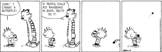 calvin-and-hobbs