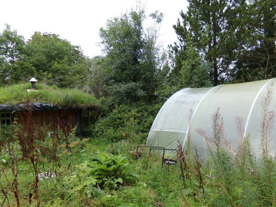 Polytunnel Tipi Valley, photograph by AnneMarie Foley