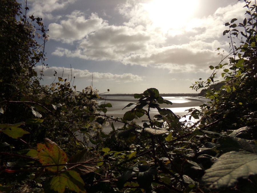 Estuary at Laugharne , photograph by AnneMarie Foley