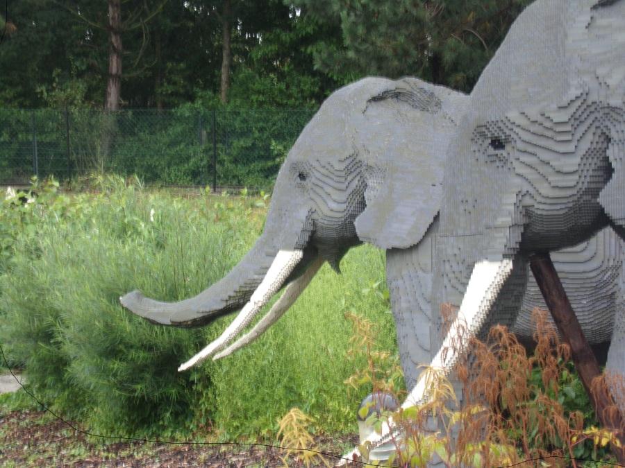 Elephants at Legoland Windsor photograph by AnneMarie Foley