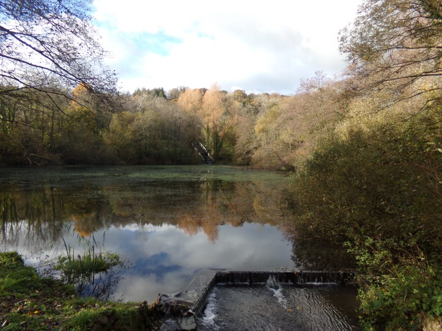 Reservoir outside Carmarthen  photograph by AnneMarie Foley