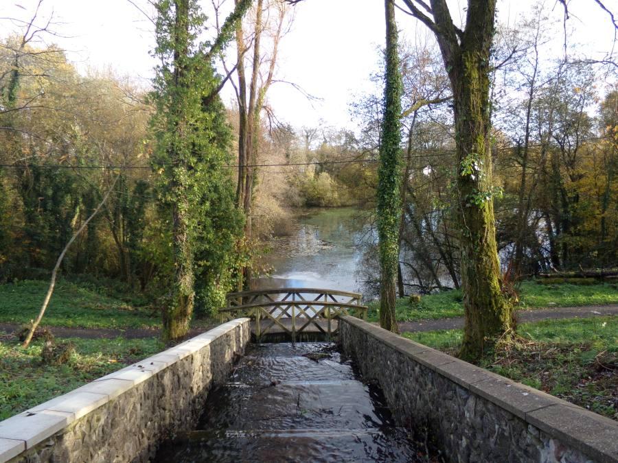 Bridge at the reservoir